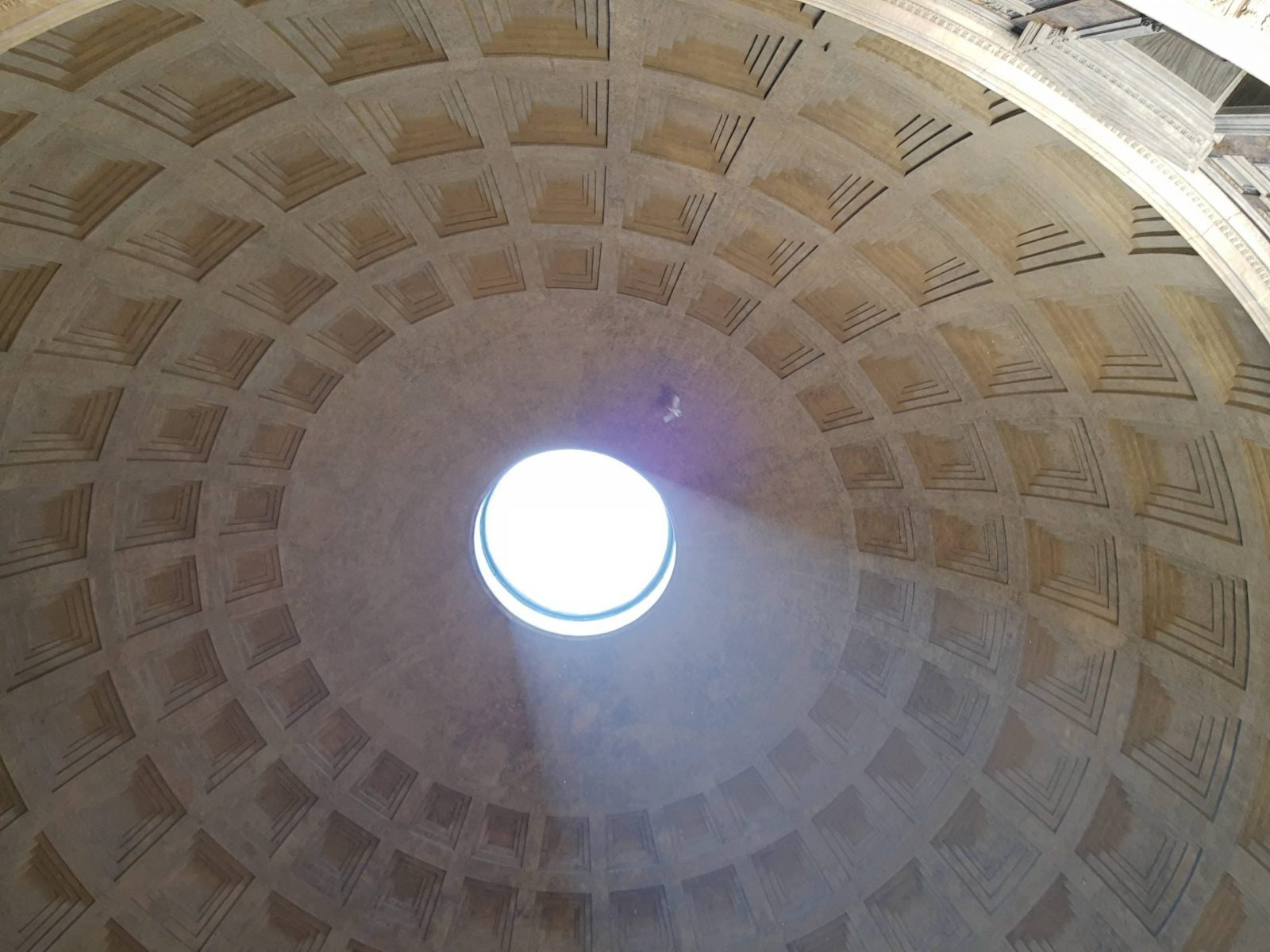 A picture of the Pantheon Dome from inside